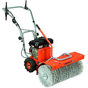 Compact stump grinders in Denver, CO